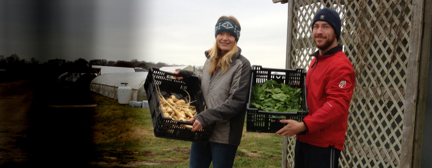 Food pantry Farm: Darcy and jack helping load fresh produce into
